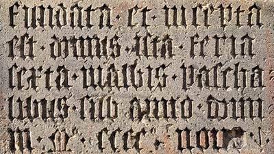 betekenis van het latijnse woord flos uitgebeeld door oude latijnse inscriptie op muur